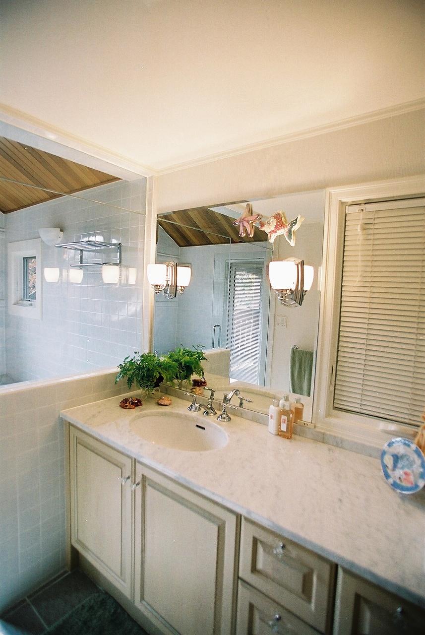 ガラス張りのバスルームと洗面脱衣室